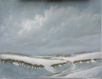 WINTERSHEUVELLAND 70 X 90